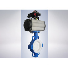 2507 Disc Butterfly Valve