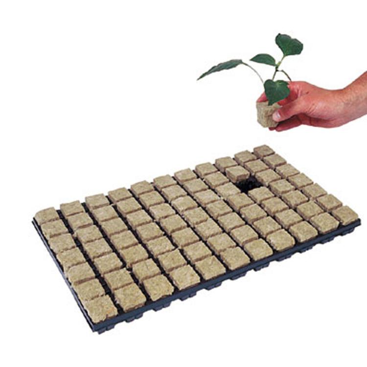 Grodan-Seed-Cubes_123
