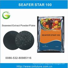 Seaweed Extract Fertilizer From Ascophyllum Nodosum