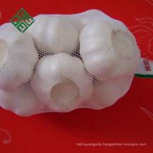 2017 chinese farm 3p fresh solo pure white garlic