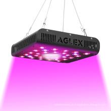 Lâmpada de cultivo LED para mudas COB 600W vermelho azul