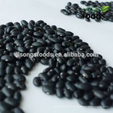 Japanese Black Beans for healthy soya bean meal