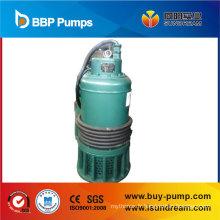 Pompe submersible avec interrupteur à flotteur, pompe à eau, pompe de jardin