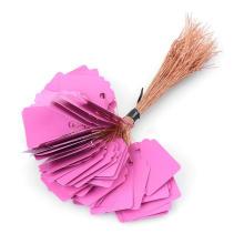 Lila Farbe aufgereiht Tag mit Sring, Papier hängen aufgereiht