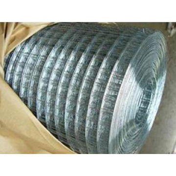 Hot Dipped Galvanized Welded Wire Meshs
