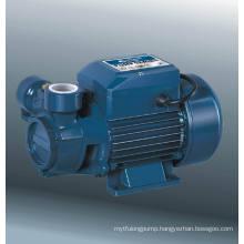 Vortex Pump (DQm60-1)