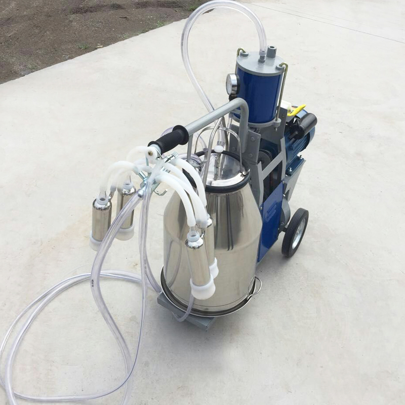 milking machine of piston motor
