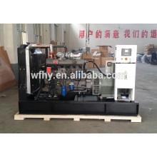 200KVA Магнитный моторный генератор мощности на продажу