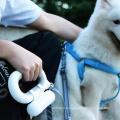 Coleira de cão Coleira de animal de estimação Dog Nylon retrátil automática