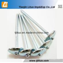 Clous de toiture galvanisés par parapluie de 9g 2,5 pouces