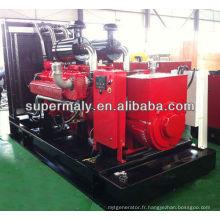 Générateur de gaz naturel refroidi à l'eau