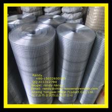 YW-- Welded mesh(professioanl manufacturer) /Skype: randy.liang1