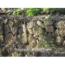 Gros Gabion Mesh et Gabion Wall