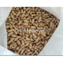 2017 new crop high quality peanut