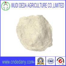 Feed Grade High Quality Wheat Gluten Powder Flour