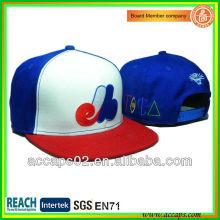 Custom Hip Hop Flat Bill Caps SN-2273