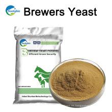 Levadura de cerveza de calidad de alimentación animal con buen precio