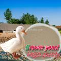 Alvenaria fornecedor Alibaba secas levedura para alimentos para animais