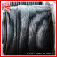 Câble de fil d'acier de meilleure qualité (fabrication)