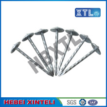 Galvanized Umbrella Roofing Nail With Large Head