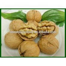 Big Size Good Taste Walnut