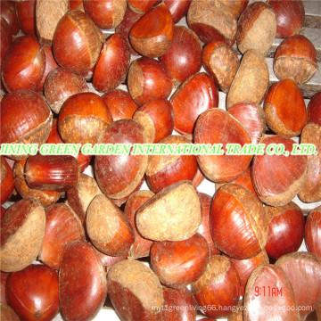 Fresh New Crop Tasty Chestnut