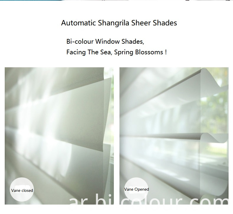 Window Sheer Blinds