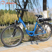 Dynavolt 36v 12.8Ah lithium battery electric bicycle 300W