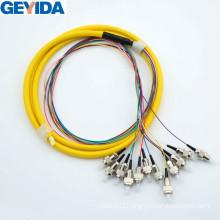 FC/Upc 12 Core Fiber Optic Pigtail Sm