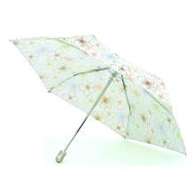 Compact Mini Auto Open & Close Umbrella