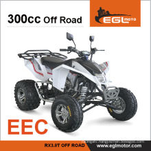 300cc EEC Certification Sports Buggy Atv
