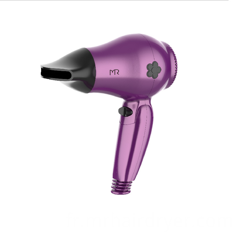 Folding Travel Hair Dryer