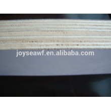Russia and India market HPL FIREPROOF PLYWOOD/ HPL LAMINATED SHEET MNUFACTURER
