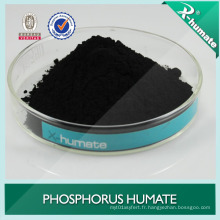 Humate de Phosporus de marque X- Humate (HA-P)