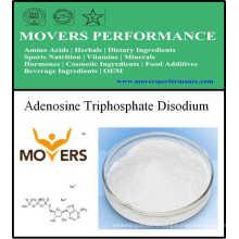 Supplément nutritionnel - Adénosine triphosphate disodique (ATP)