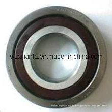 Roulement à rouleaux en nylon retenue 6306 Tn9/C3 convoyeur pour Machine minière