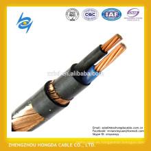 10mm2 Multi Cores 600 / 1000V kable conductor de cobre PVC / XLPE cable concéntrico aislado
