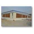Automatic Poultry Equipment for Breeder Management