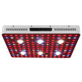 Alta potencia Led Plant Light Cob 3000w Phlizon