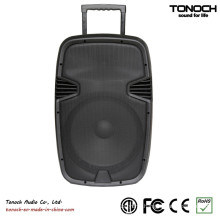 15 Inch DJ Club Speaker PA Loudspeaker with Battery