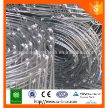 Hot sale!!! Galvanized Steel Horse Fence/farm field fence for Rearing Animals