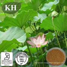 Lotus Leaf Extract: Nuciferine 2% by HPLC; 10: 1