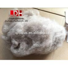 Fábrica de China cardada fibra de cachemira de cabra puro de lana de oveja pura cardada luz violeta