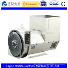 BCI164C 13.5KW 1800rpm alternateur pour groupe électrogène