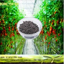 Peat and manure based Organic Fertilizer