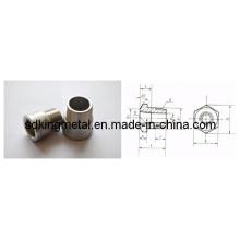 Buje de cabeza hexagonal roscado de acero inoxidable (JB / ZQ4425)