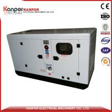 Yanmar 18kw 22.5kVA (20kw 25kVA) Powerful Diesel Generator