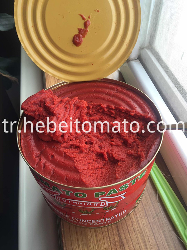 tomato paste for Cameroon