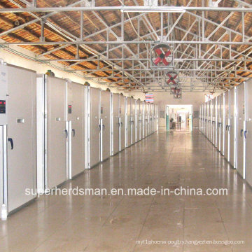 Automatic Egg Incubator for Chiken