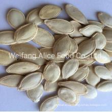 China Wholesale Halal Kosher Certificated 8.3-10mm 10mm Above Size Shine Skin Pumpkin Seeds